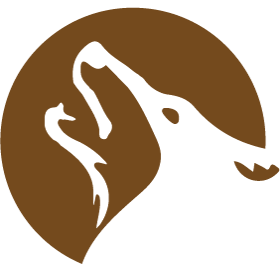 dawood-logo_icon